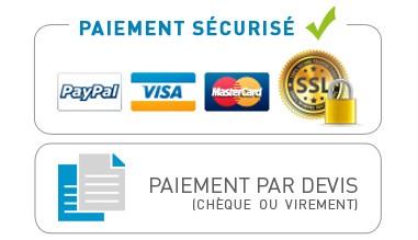 Paiement sécurisé carte bancaire / paypal / chèque / virement